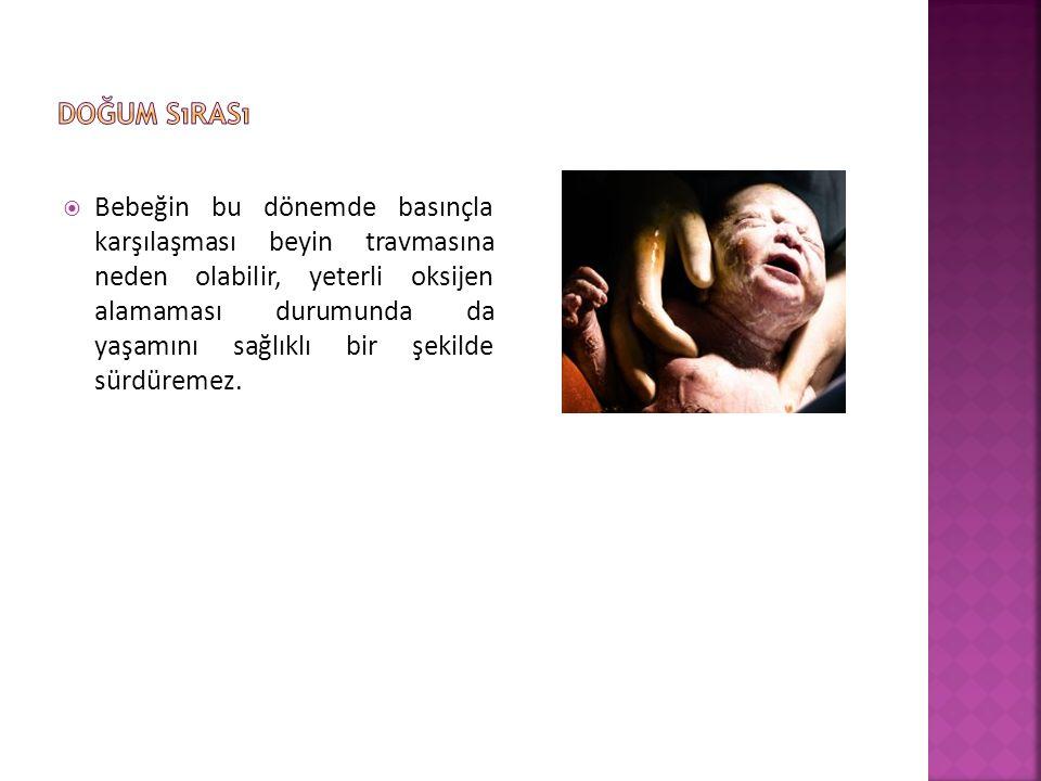 Doğum sırası