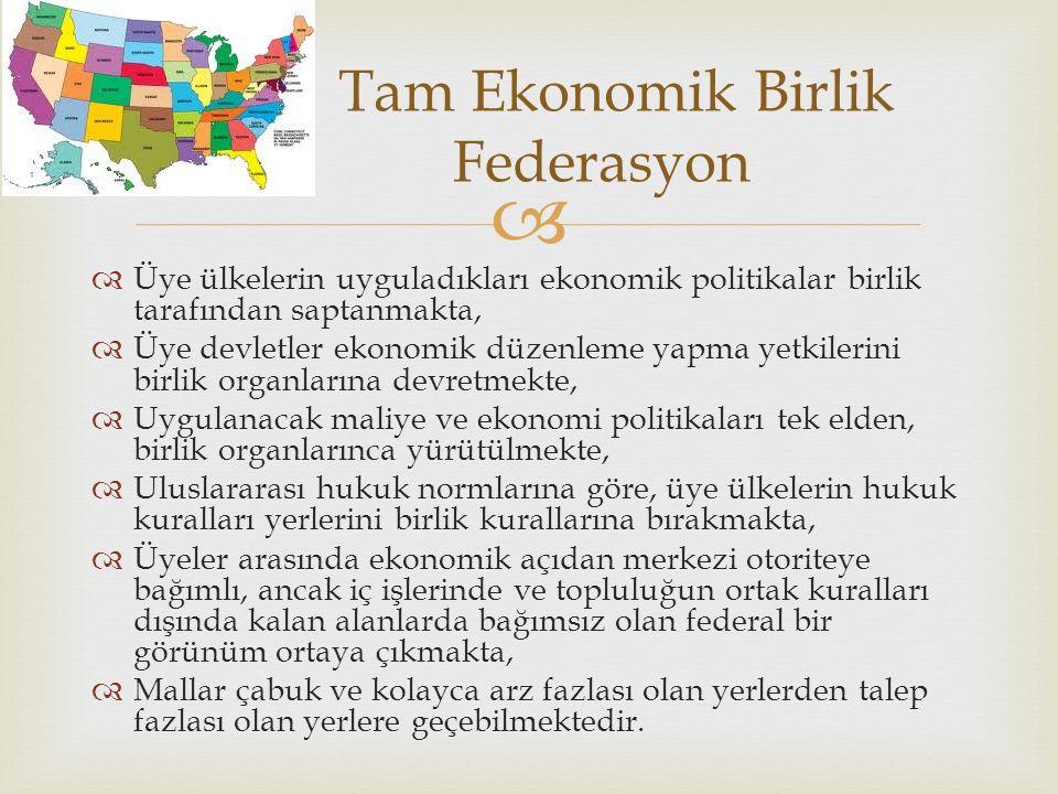 Tam Ekonomik Birlik Federasyon