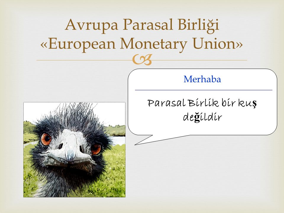 Avrupa Parasal Birliği «European Monetary Union»