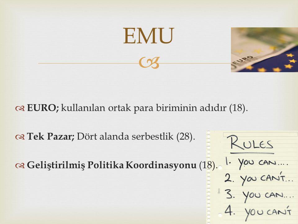 EMU EURO; kullanılan ortak para biriminin adıdır (18).