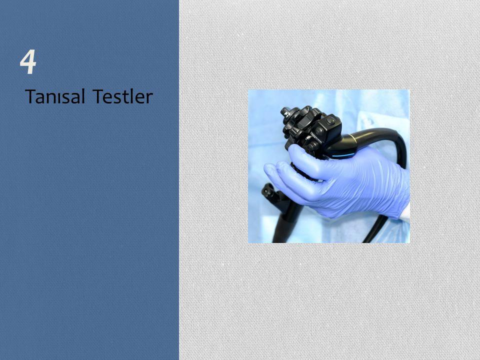 4 Tanısal Testler