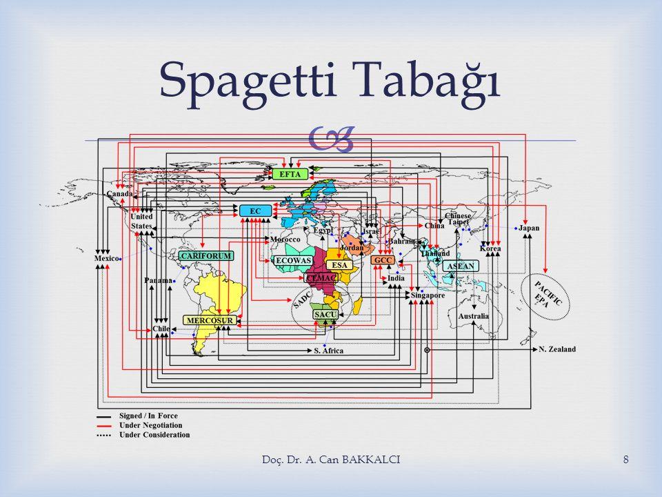 Spagetti Tabağı Doç. Dr. A. Can BAKKALCI