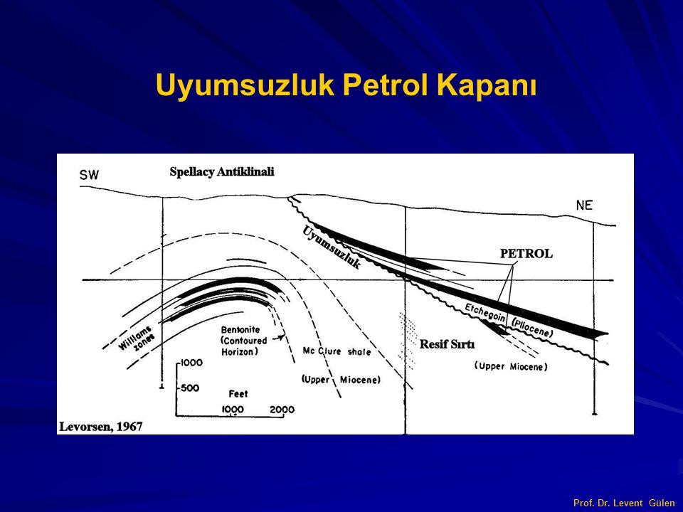 Uyumsuzluk Petrol Kapanı
