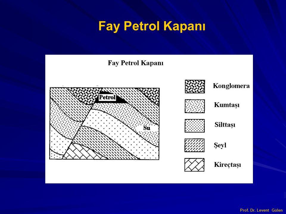 Fay Petrol Kapanı Prof. Dr. Levent Gülen
