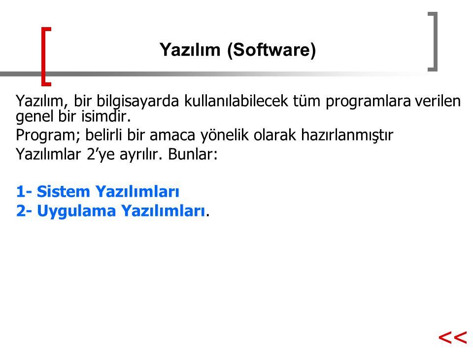 << Yazılım (Software)