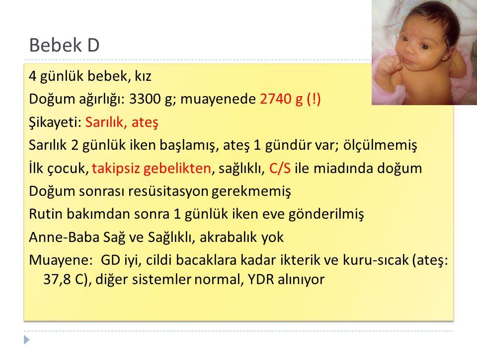 Bebek D