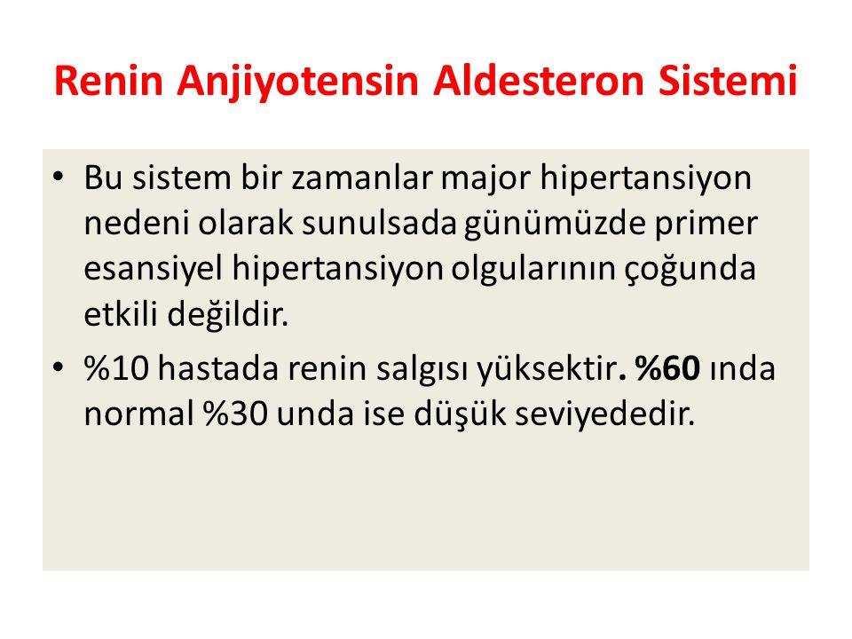 Renin Anjiyotensin Aldesteron Sistemi