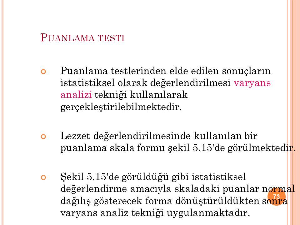 Puanlama testi