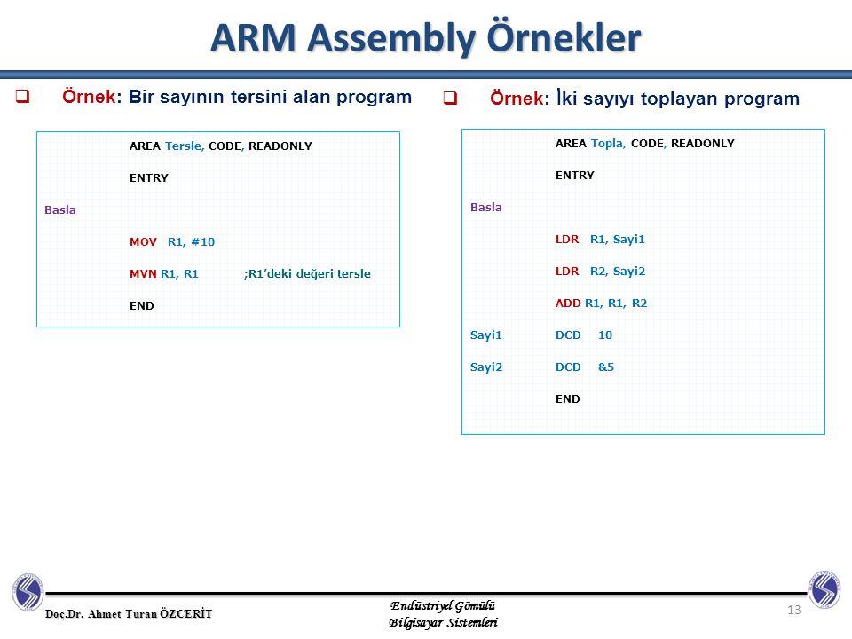 ARM Assembly Örnekler Örnek: Bir sayının tersini alan program