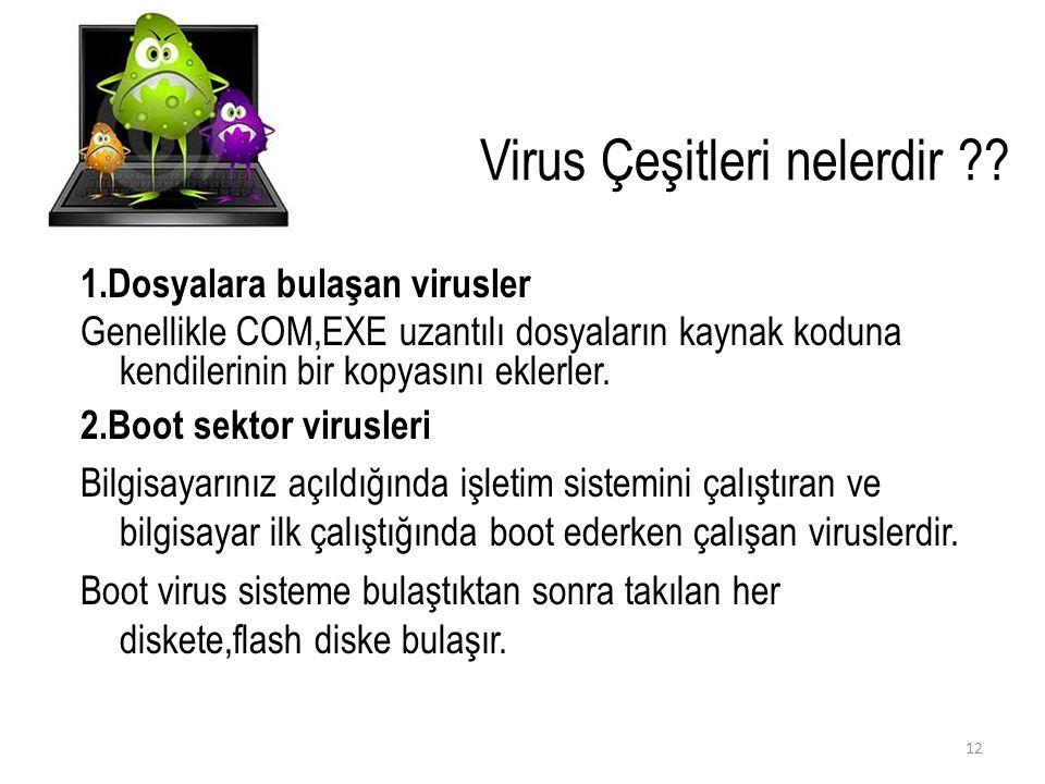 Virus Çeşitleri nelerdir