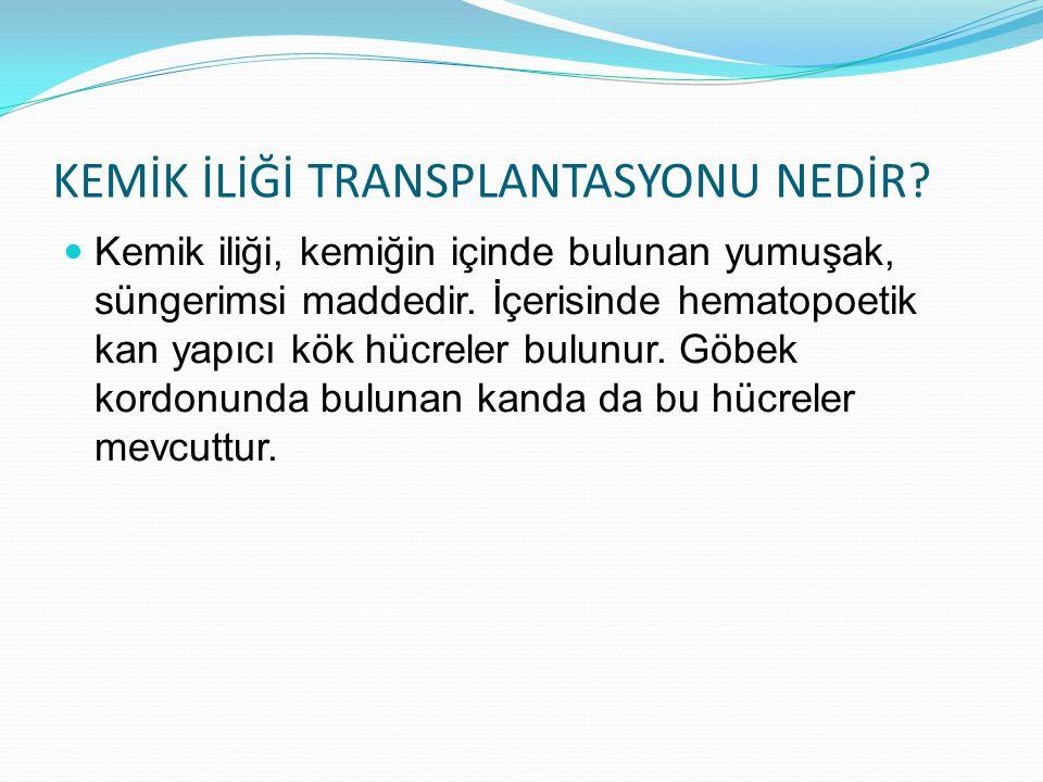 KEMİK İLİĞİ TRANSPLANTASYONU NEDİR