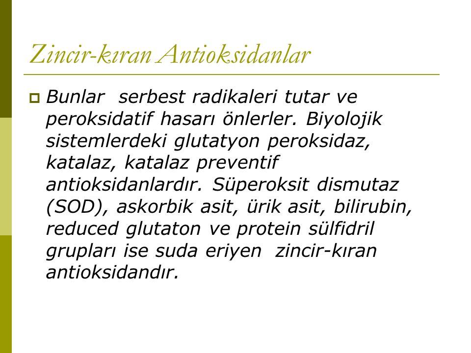Zincir-kıran Antioksidanlar