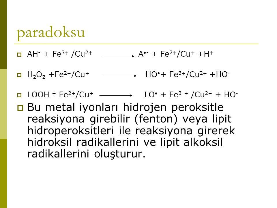 paradoksu AH- + Fe3+ /Cu2+ A•- + Fe2+/Cu+ +H+ H2O2 +Fe2+/Cu+ HO•+ Fe3+/Cu2+ +HO-