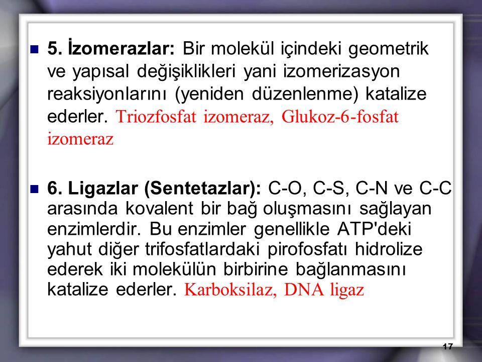 5. İzomerazlar: Bir molekül içindeki geometrik ve yapısal değişiklikleri yani izomerizasyon reaksiyonlarını (yeniden düzenlenme) katalize ederler. Triozfosfat izomeraz, Glukoz-6-fosfat izomeraz