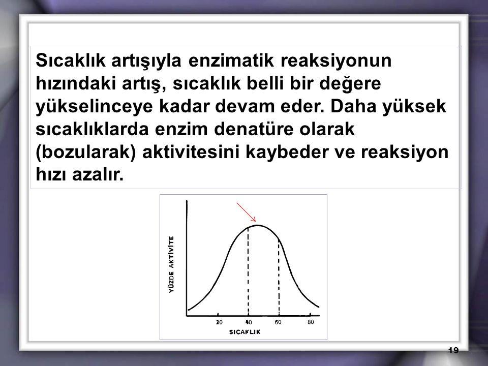 Sıcaklık artışıyla enzimatik reaksiyonun hızındaki artış, sıcaklık belli bir değere yükselinceye kadar devam eder.