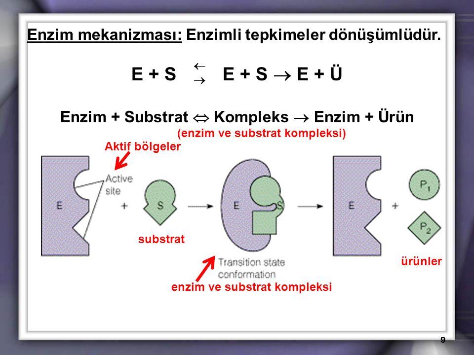 Enzim mekanizması: Enzimli tepkimeler dönüşümlüdür.