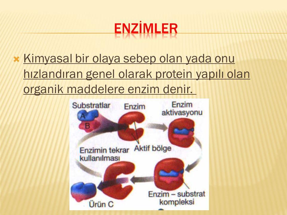 enzİmler Kimyasal bir olaya sebep olan yada onu hızlandıran genel olarak protein yapılı olan organik maddelere enzim denir.