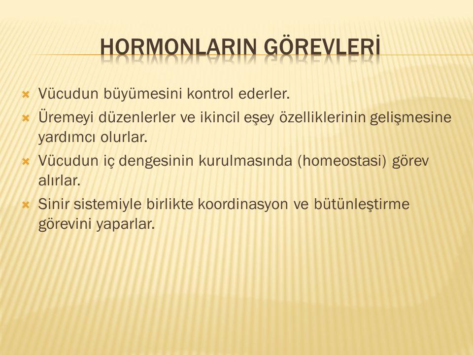 Hormonlarin Görevlerİ