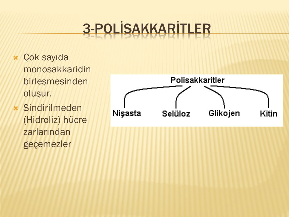 3-Polİsakkarİtler Çok sayıda monosakkaridin birleşmesinden oluşur.