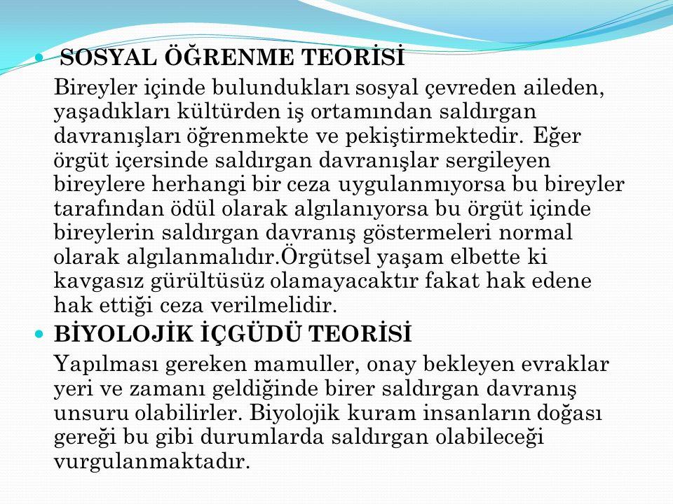 SOSYAL ÖĞRENME TEORİSİ