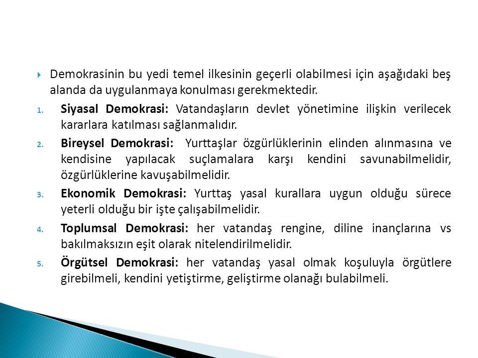 Demokrasinin bu yedi temel ilkesinin geçerli olabilmesi için aşağıdaki beş alanda da uygulanmaya konulması gerekmektedir.