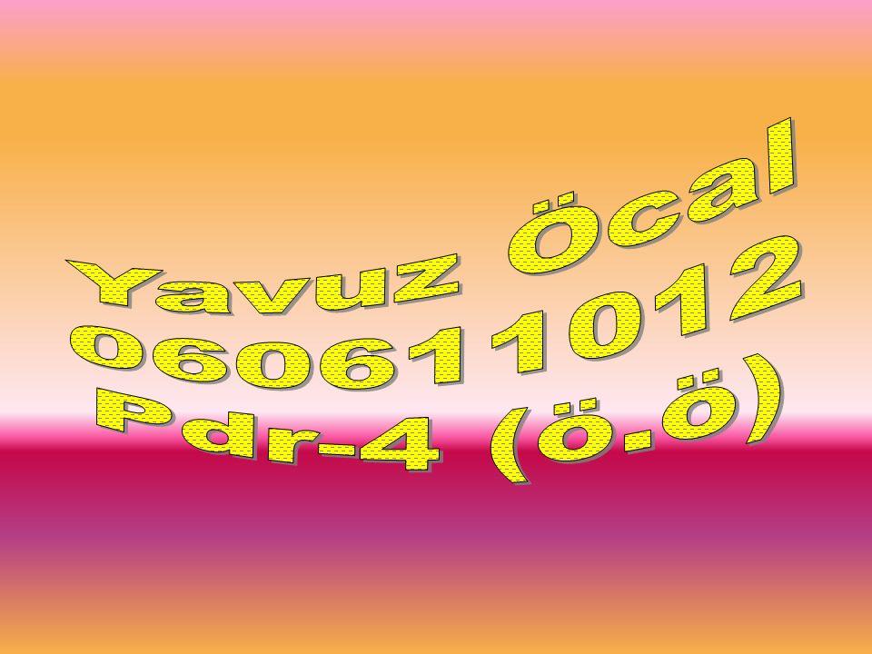 Yavuz Öcal 060611012 Pdr-4 (ö.ö)