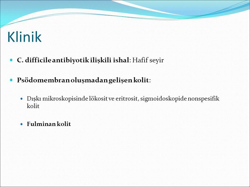 Klinik C. difficile antibiyotik ilişkili ishal: Hafif seyir