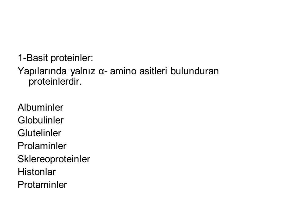 1-Basit proteinler: Yapılarında yalnız α- amino asitleri bulunduran proteinlerdir. Albuminler. Globulinler.
