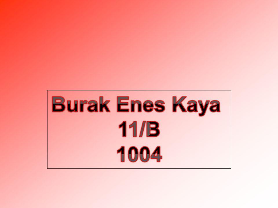Burak Enes Kaya 11/B 1004