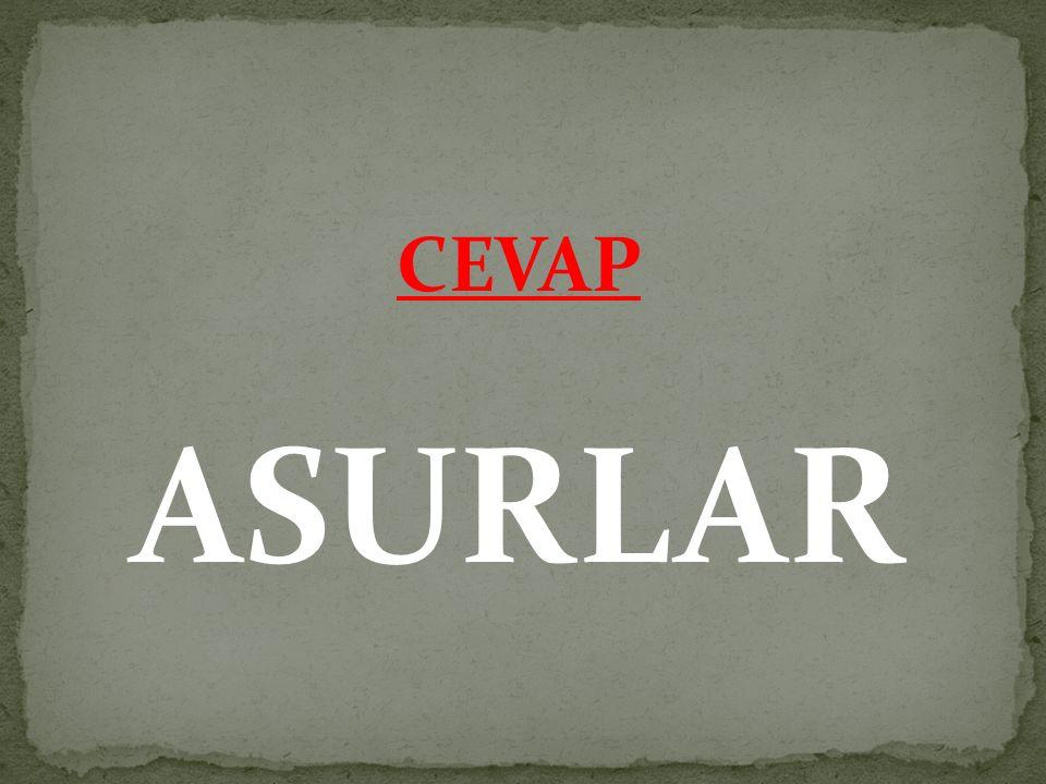 CEVAP ASURLAR