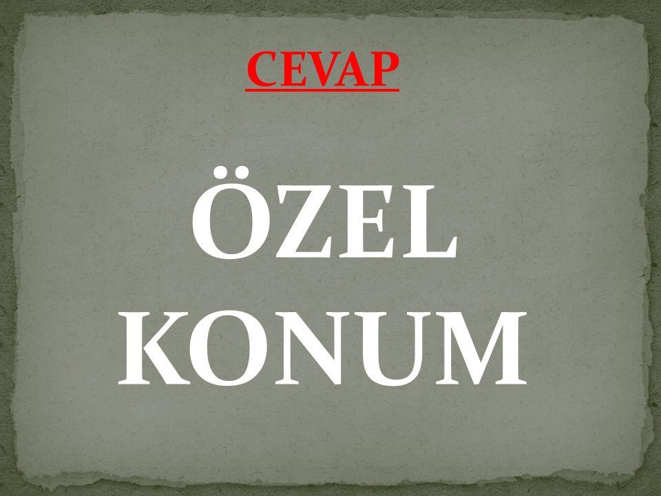 CEVAP ÖZEL KONUM