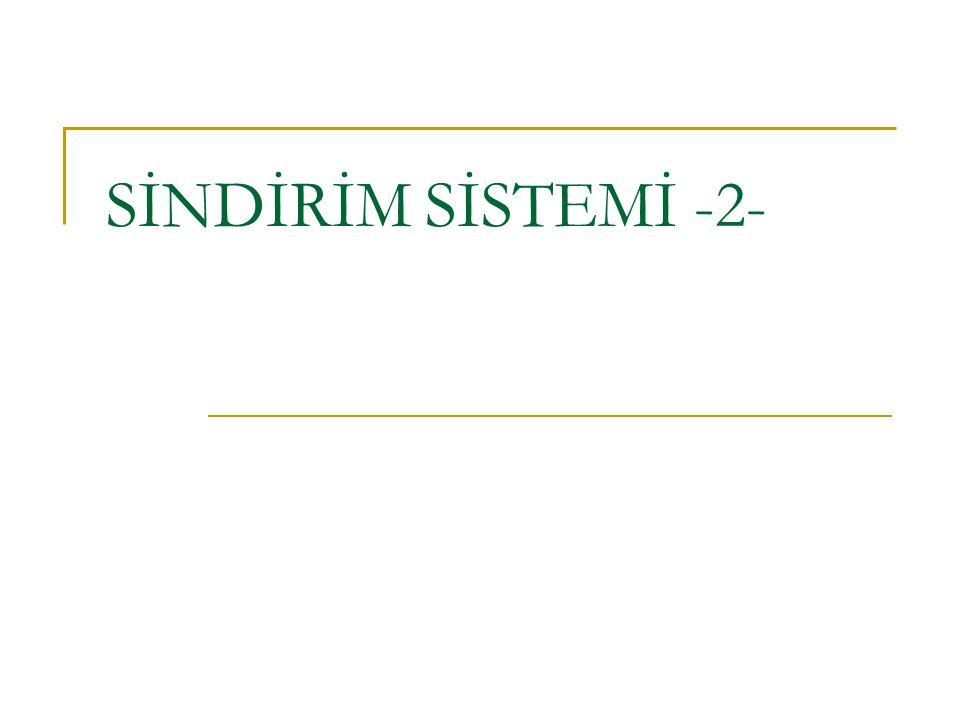 SİNDİRİM SİSTEMİ -2-