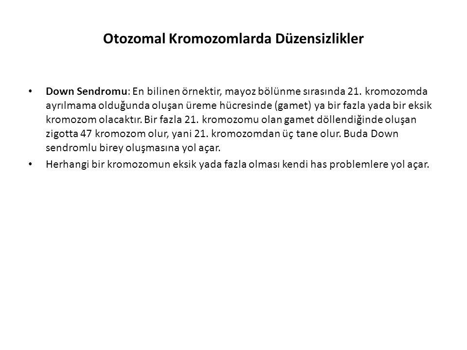 Otozomal Kromozomlarda Düzensizlikler