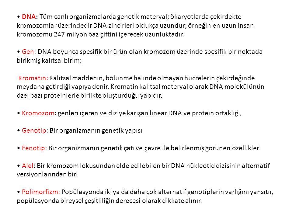 • DNA: Tüm canlı organizmalarda genetik materyal; ökaryotlarda çekirdekte kromozomlar üzerindedir DNA zincirleri oldukça uzundur; örneğin en uzun insan kromozomu 247 milyon baz çiftini içerecek uzunluktadır.