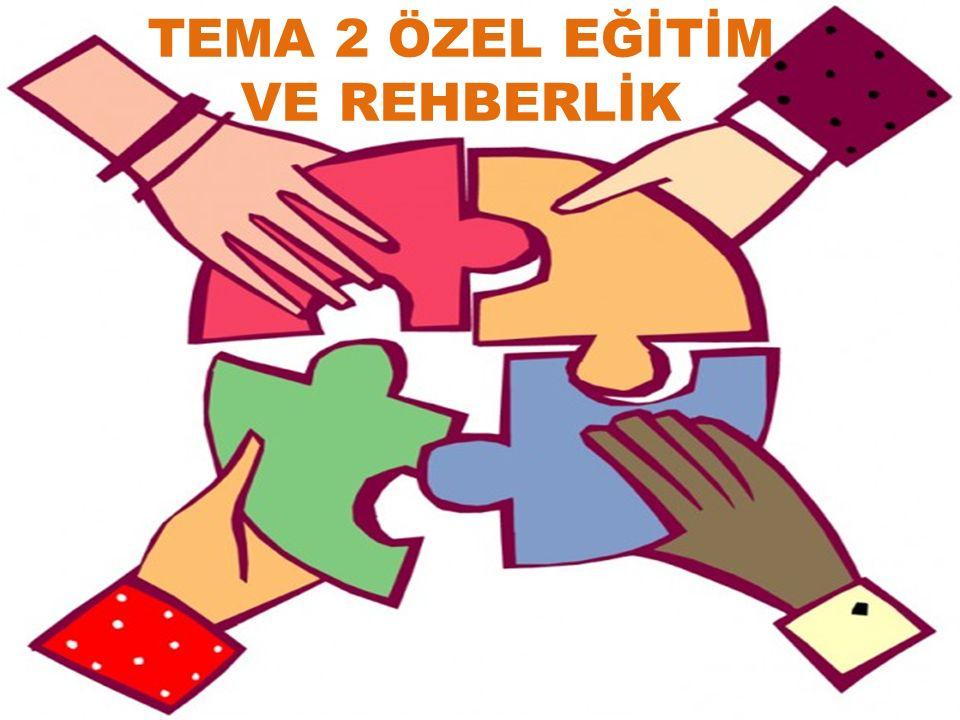 TEMA 2 ÖZEL EĞİTİM VE REHBERLİK