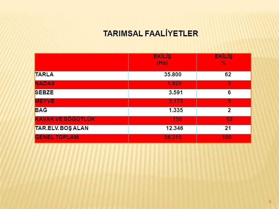 TARIMSAL FAALİYETLER EKİLİŞ (Ha) EKİLİŞ % TARLA 35.800 62 NADAS 1.920