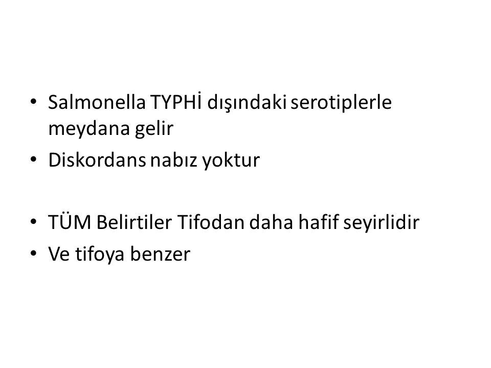 Salmonella TYPHİ dışındaki serotiplerle meydana gelir