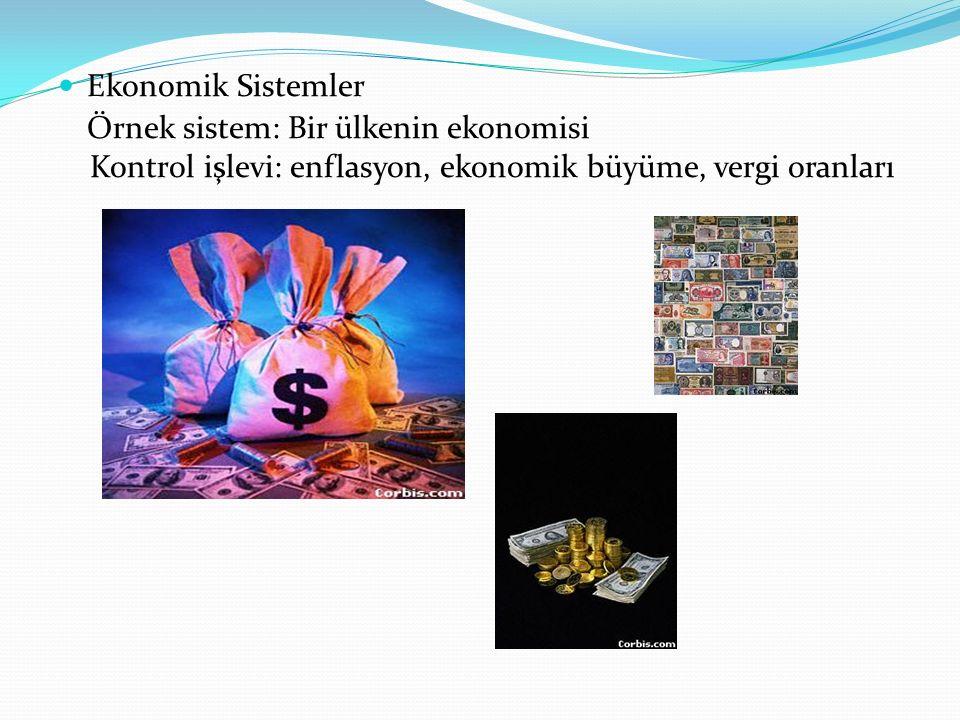 Ekonomik Sistemler Örnek sistem: Bir ülkenin ekonomisi.
