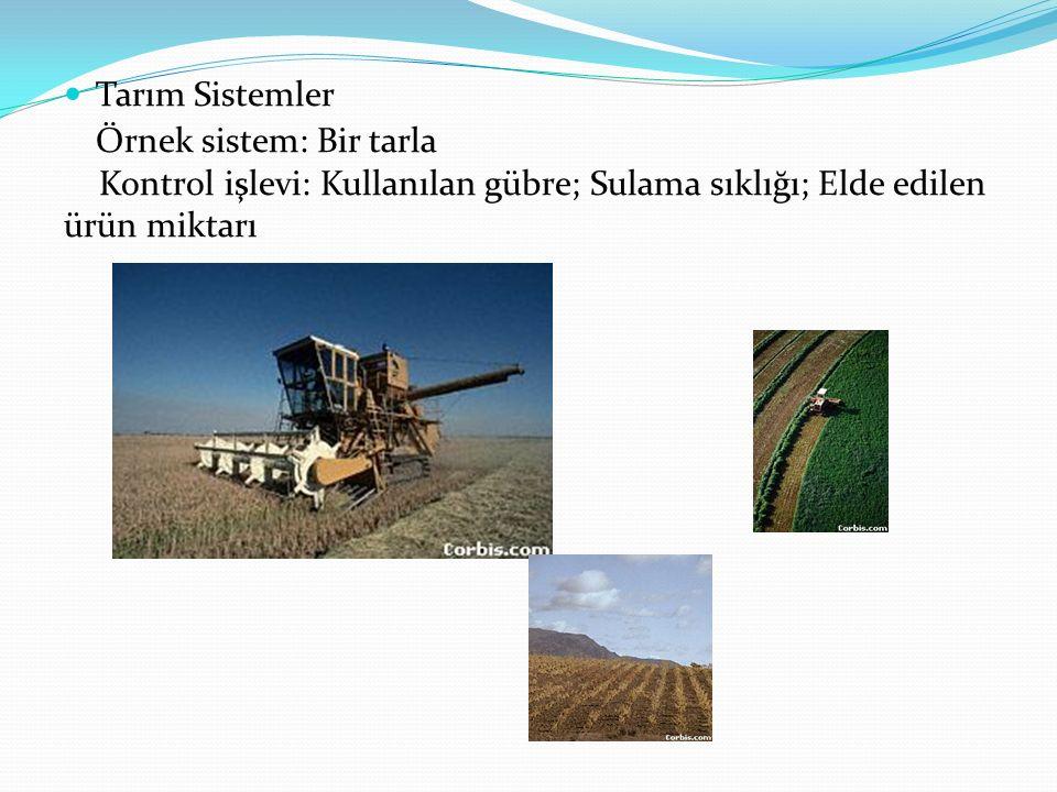 Tarım Sistemler Örnek sistem: Bir tarla.