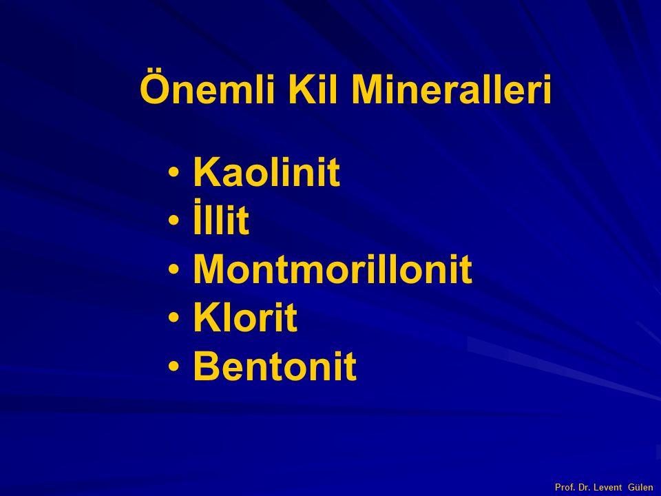 Önemli Kil Mineralleri