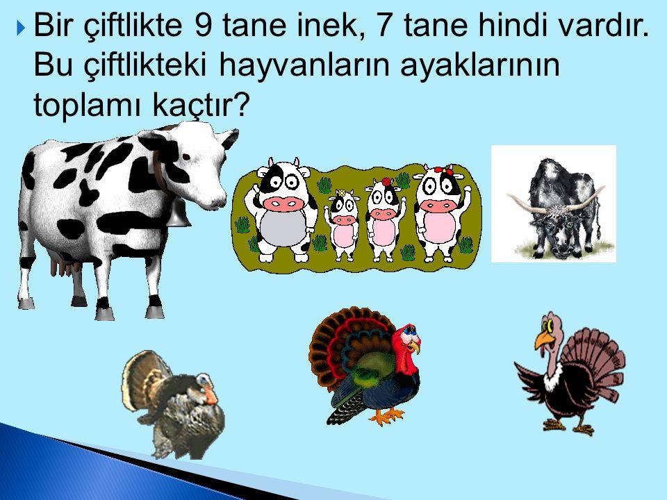 Bir çiftlikte 9 tane inek, 7 tane hindi vardır