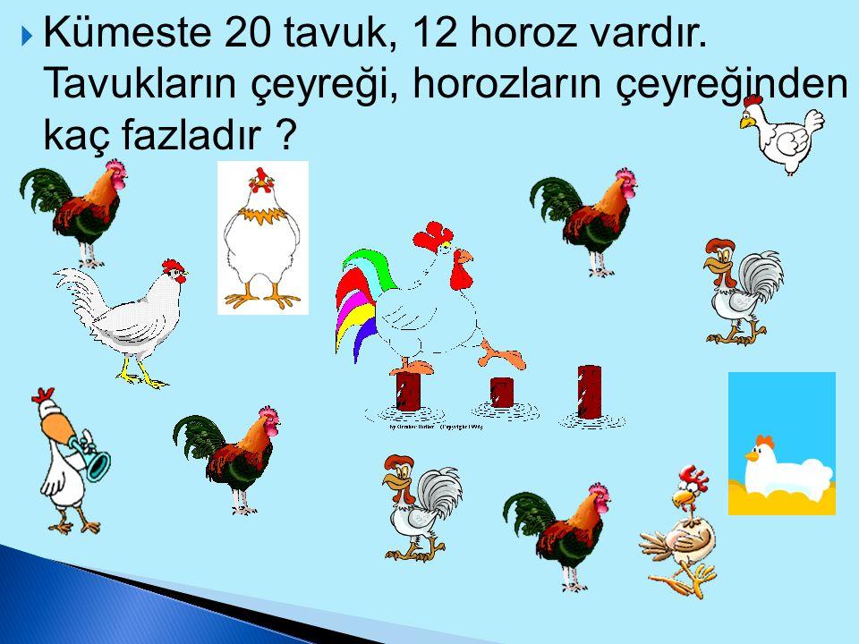 Kümeste 20 tavuk, 12 horoz vardır