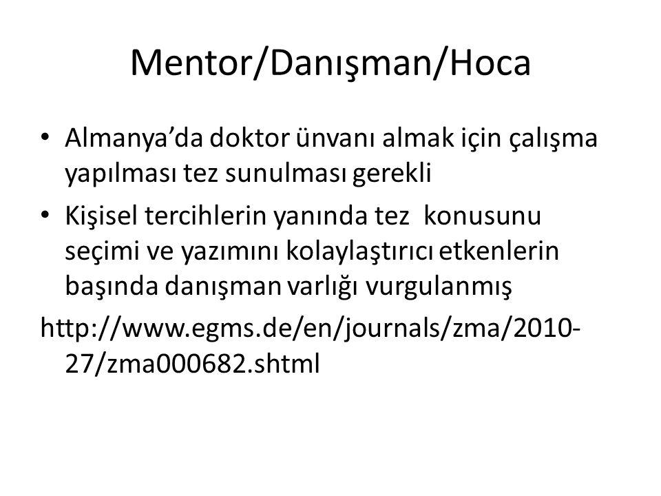 Mentor/Danışman/Hoca