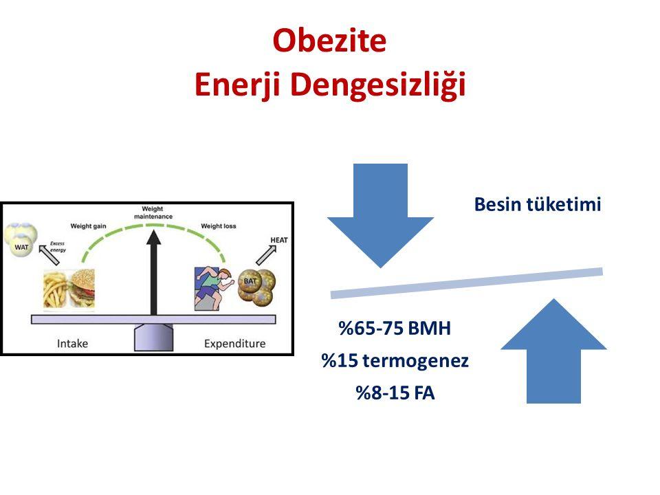Obezite Enerji Dengesizliği
