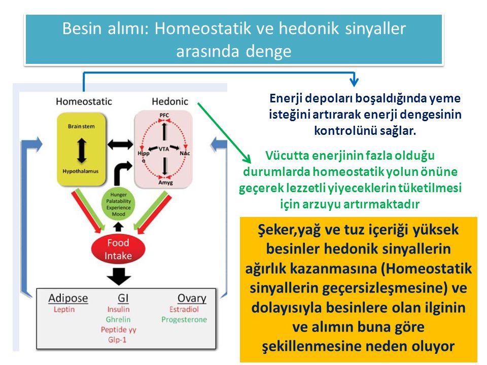 Besin alımı: Homeostatik ve hedonik sinyaller arasında denge