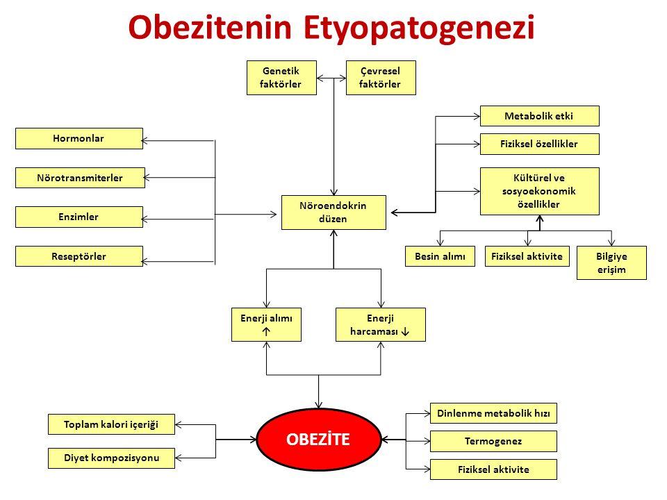 Obezitenin Etyopatogenezi