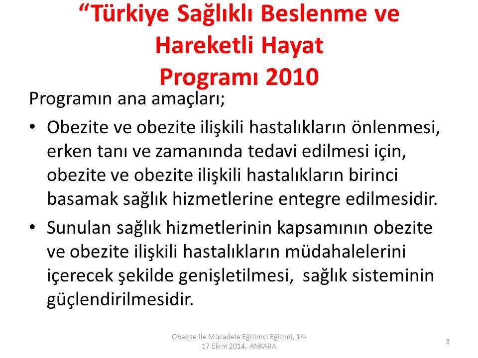 Türkiye Sağlıklı Beslenme ve Hareketli Hayat Programı 2010
