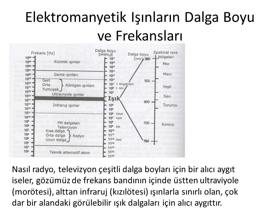Elektromanyetik Işınların Dalga Boyu ve Frekansları