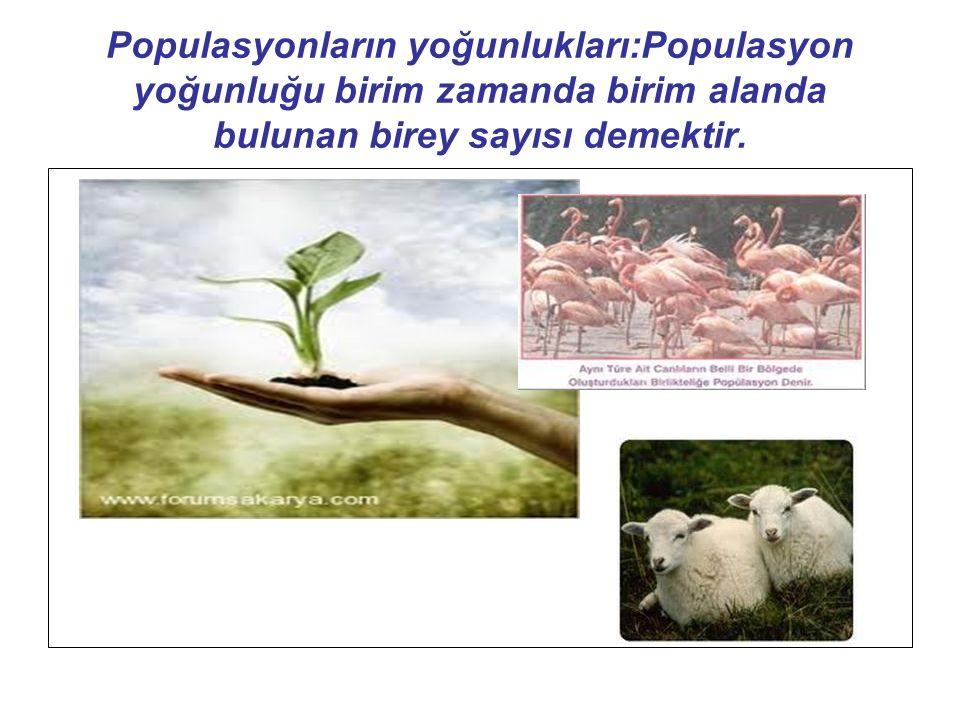 Populasyonların yoğunlukları:Populasyon yoğunluğu birim zamanda birim alanda bulunan birey sayısı demektir.