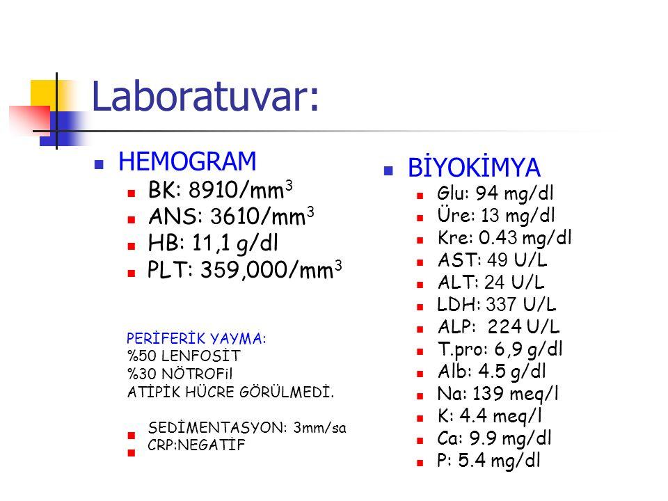 Laboratuvar: HEMOGRAM BİYOKİMYA BK: 8910/mm3 ANS: 3610/mm3